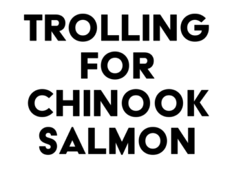 tips for trolling for chinook salmon