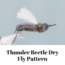 Thunder Beetle dry fly pattern