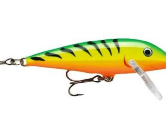 fire tiger rapala for trolling for trout
